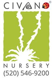 Civano Nursery